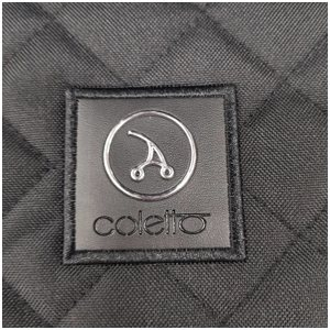 Коляска прогулочная Coletto Joggy 2020 Silver/Black